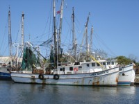 shrimp-boat-wp6