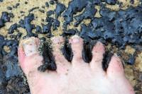 Oil+Slick+Reaches+Queensland+Beaches+YVrC94OAU06l