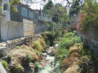Polluted Stream in San Pedro de Martir